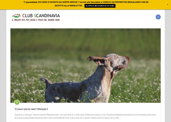 Sezione QUIZ CACCIA e PESCA del sito CLUB SCANDINAVIA